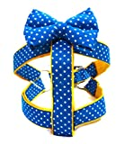 #3: That Dog In Tuxedo Huckleberry Dog Bowtie Harness - Gold Star (XL)