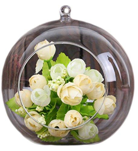 Demarkt Botella Florero de Flor Planta Colgante Vidrio Transparente De