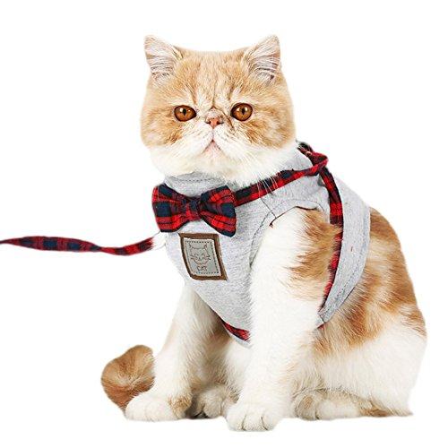 Awhao Katzengeschirr, ausbruchsicher, britischer Stil, mit Leine, für Hunde und Katzen