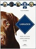 Cani per bambini piccoli e neonati - 51qOHwHpKVL. SL160