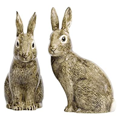 Quail Ceramics - Wild Rabbit Salt And Pepper Pots by Quail Ceramics