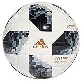 ADIDAS FIFA Weltmeisterschaft Sala Training Fußball, White/Black/Silvmt, FUTS