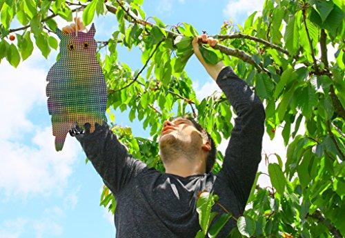 Betterday 2 pezzi repellente uccelli scaccia uccelli for Dissuasori piccioni amazon
