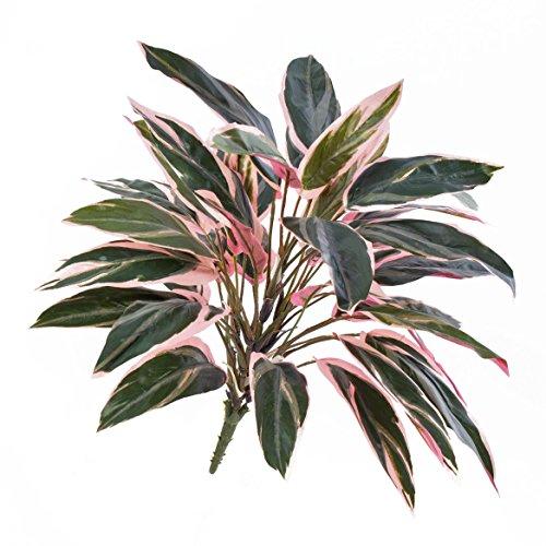 deko-cordyline-fruticosa-thais-mit-36-blattern-grun-rosa-50-cm-kunstliche-pflanze-kunstlischer-busch
