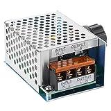 Lejin AC220V 230V Drehzahlregler Hochleistung bis 4000W SCR Spannung Regler mit Gehäuse Einstellbarer Spannungsregler Dimmer Motor Drehzahlregler Licht Thermostat Drehzahlregler