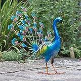 Creekwood 48055pavone uccello statua ornamento 58cm altezza, blu, 40x 51x 58cm