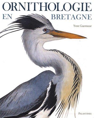 Ornithologie en Bretagne