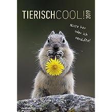 Tierisch cool! 2019 - Bildkalender / Humor-Kalender (24 x 34) - mit Sprüchen