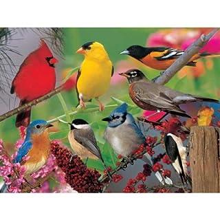2PK Puzzle Backyard Birds