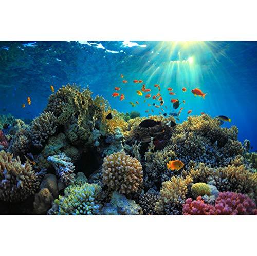 Cassisy 1,5x1m Vinyl Unterseeisch Fotohintergrund Meerestiere Korallenriff Tropischer Fisch Sonnenstrahl Fotoleinwand Hintergrund für Fotostudio Requisiten Party Photo Booth
