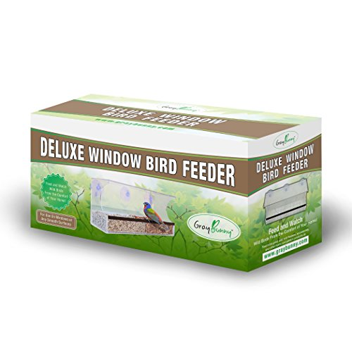 graybunny gb-6851Deluxe Klar Fenster Futterhaus, groß Wild Bird Feeder mit Entleerung Löcher, abnehmbare Tablett, Super Starke Saugnäpfe