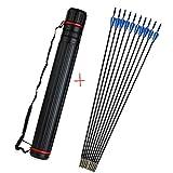 ZSHJG 12Pcs Frecce in Fibra di Vetro 31Pollici Frecce Pratica Frecce di Caccia per Ricurvo e Arco Compound con Faretra a Freccia (Blu)