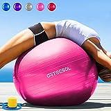 Arteesol Balle d'exercice 65cm/75cm Anti-éclatement Anti-dérapant Yoga Swiss Ball Accouchement Balle Rapide Pompe Fitness Gym Yoga Pilates Core Training Thérapie Physique, Rose, 75 cm