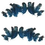 Sharplace 50pcs 3-6cm Fasan Huhn Federn für Handwerk Basteln Party Kostüm Deko