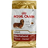 Royal Canin 35131 Breed Dachshund Croquettes, 1,5 kg- Hundefutter