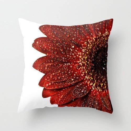 Alicert5II Roter Kissenbezug Aurora Rote Blume Wurfkissenbezug Gerbera Daisy Fotografie Dekorativ Crimson Schlafzimmer Akzent Rote botanische Kunst -