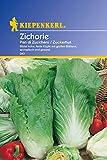 Gemüsesamen - Zichorie - Zuckerhut von Kiepenkerl