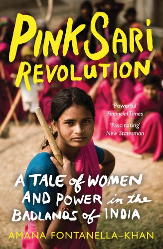 pink-sari-revolution-a-tale-of-women-and-power-in-the-badlands-of-india