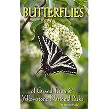 Butterflies of Grand Teton & Yellowstone National Parks