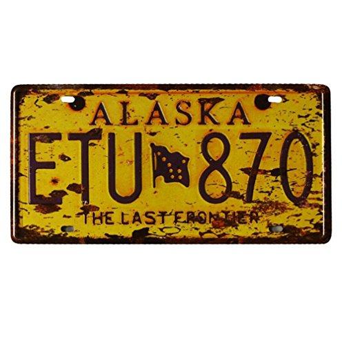 """Eureya-Plaque d'immatriculation de Voiture-Décoration Murale Vintage pour Maison, café, Bar, pub, Restaurant, Exposition,6""""x12"""" (Alaska ETU 870)"""