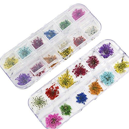 Kentop1 Caja 24 Piezas Pegatinas Uñas Flores Secas