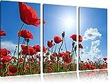 Mohnblumen 3-Teiler Leinwandbild 120x80 Bild auf Leinwand, XXL riesige Bilder fertig gerahmt mit Keilrahmen, Kunstdruck auf Wandbild mit Rahmen, gänstiger als Gemälde oder Ölbild, kein Poster oder Plakat