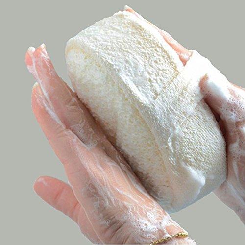 Comtervi - Esponjas exfoliantes exfoliantes ducha