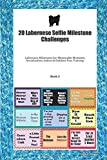 20 Labernese Selfie Milestone Challenges: Labernese Milestones for Memorable Moments, Socialization, Indoor & Outdoor Fun, Training Book 3