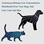 flea and tick collar for dog cat, 8 months protection, natural plant extracts-waterproof-safe & hypoallergenic-anti flea and tick prevention-pest control collars for pets 25 inches Flea and Tick Collar for Dogs and Cats, 8 Months 51qRM9SNg4L
