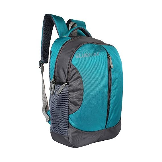 The Blue Pink Leonardo Polyester 18 Liters Turquoise And Grey Laptop Backpack (Leo-1701)