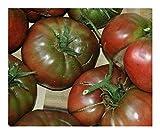 SANHOC Samen-Paket: Tomate Schwarze Trüffel - Fleischtomate - 15 SeedsSEED