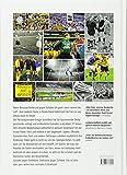 Revier-Derby: Schalke 04 - Borussia Dortmund: Die Geschichte einer Rivalit?t