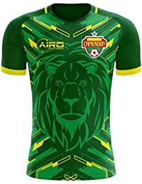 Airo Sportswear 2018-2019 Cameroon Home Concept Football Soccer T-Shirt Camiseta
