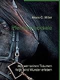Pferdeschicksale: Nur wer seinen Träumen folgt, wird Wunder erleben