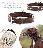 Jack & Russell Premium Leder Hunde Halsband Romeo - Original Leder Halsband mit Nieten - Halsband Romeo (L, Braun)