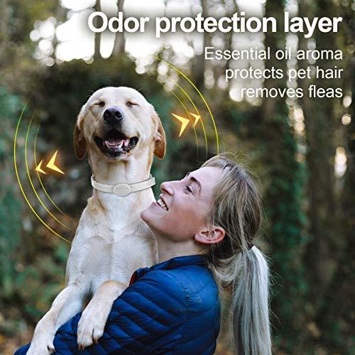 Zoom IMG-1 dothnix collare antipulci cane cani