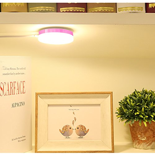 LED Leselampe Buchlampe,dimmbare Bettleuchte, Magnetlicht ,mit 5 Helligkeitstufen 5 helle Farben,Leselampe Flexible Augenschutz für Schlafzimmer Büro Aluminium Kunststoff,Tragbare und Flexibel,LED Light camping Lampe,Campinglampe,Camping Wandern Nachtangeln Notlicht,Arbeitsplatzleuchten,Außen- oder Innen,USB-Kabel Inklusive ,[Energieklasse A++]