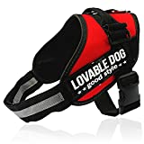 #5: PetsUp Easy Walk Dog Vest Harness perfect for Pet Walking, Training and Mobility (Large, Red)