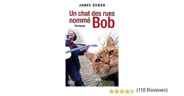 Un Chat Des Rues Nommé Bob Doc Recit Essai T 15781 Ebook James