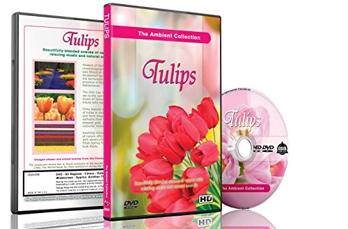 Tulpen Blumen DVD - Blumen von Holland, Videos zur Entspannung