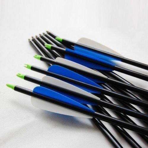 20 Fibra di vetro Frecce Campo Punte Tiro con l'arco Caccia BroadHead compatibile Compound e ricurvo - 20 Frecce