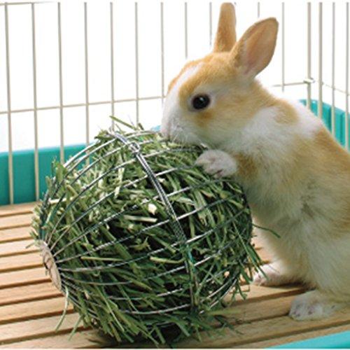LQZ XL Futterball Kugel Spielball für Kaninchen Nager aus Edelstahl 13CM
