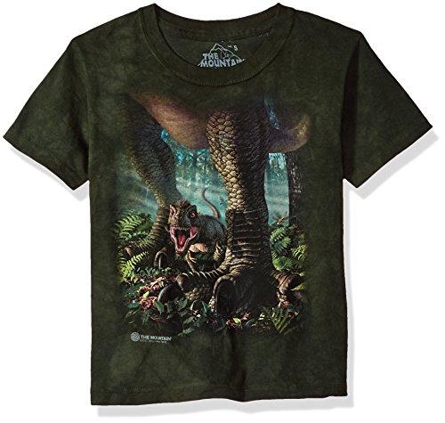 The Mountain Kinder Wee Rex Kids Tee T-Shirt, Grün, M