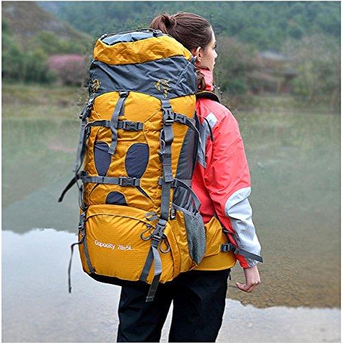 75L wasserdichte Outdoor-Sport Wandern Trekking Camping Rucksack Pack Bergsteigen Klettern Tasche für Männer / Frauen Saphirblau