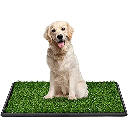 DREAMADE Hundetoilette Hunde Training Rasenmatte, Hundeklo Hundetöpfchen Kunstrasen, Welpentoilette Haustiertoilette…