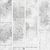 murando Papier peint intissé - PURO - Panneau décoratif - Papier peint - Photo sur le mur XXL - 10m Texture Beton Gris f-C-0011-j-a