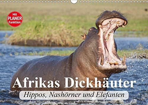 Afrikas Dickhäuter. Hippos, Nashörner und Elefanten (Wandkalender 2020 DIN A3 quer): Afrikas...