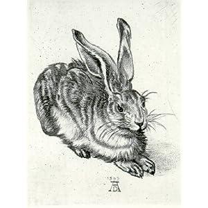 Kunstverlag Christoph Falk Handkolorierte Radierung Hase nach Dürer als Loses Blatt
