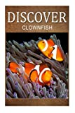 Explore the world with Discover  Press! This is a wildlife photography and facts book intended for early readers! Make sure to pay attention throughout the entire book because you'll be tested for your knowledge at the end.Discover other exciting tit...