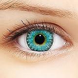 Linsenfinder Farbige Kontaktlinsen Blau '3Tones Blue' + Behälter für HELLE Augen ohne und mit Stärke blaue Kontaktlinsen farbig